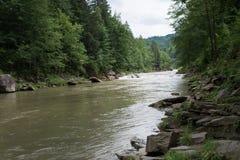 Courant de la petite rivière tranquille Photographie stock libre de droits