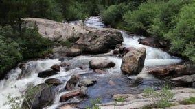 Courant de montagne cascadant et coulant autour de grand Boulder clips vidéos
