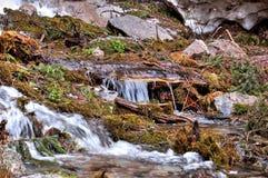 Courant de montagne, courant de montagne Zailiyskiy Alatau Images libres de droits