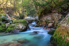 Courant de montagne dans la vallée de Lepena Image stock