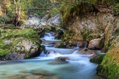 Courant de montagne dans la vallée de Lepena Photo libre de droits