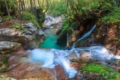 Courant de montagne dans la vallée de Lepena Photographie stock