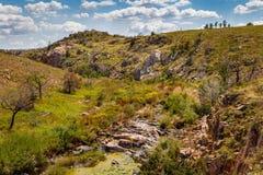 Courant de montagne dans les collines Photographie stock