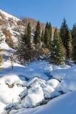 Courant de montagne en hiver images libres de droits