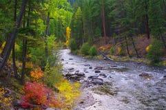 Courant de montagne, Montana, automne Images libres de droits