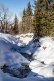 Courant de montagne sous la neige photo stock