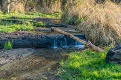Courant 2 de parc de Seahurst photos stock