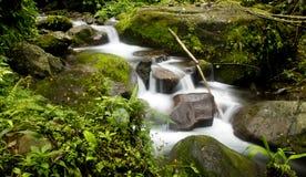 Courant de rivière Photo stock