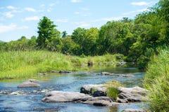 Courant de rivière d'eau Photographie stock libre de droits