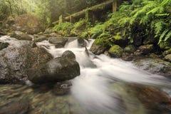Courant de rivière dans la presse Images libres de droits