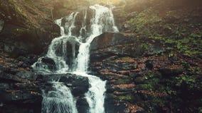 Courant du bois coloré de cascade de montagne d'automne clips vidéos