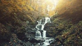 Courant du bois de cascade de mousse de montagne d'automne épique banque de vidéos