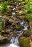 Courant et cascade de montagne Images libres de droits