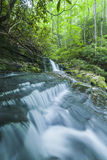 Courant et cascades, Greenbrier, Great Smoky Mountains NP Image stock