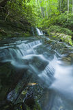 Courant et cascades, Greenbrier, Great Smoky Mountains NP Photographie stock