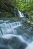 Courant et cascades, Greenbrier, Great Smoky Mountains NP Image libre de droits