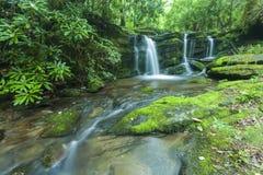 Courant et cascades, Greenbrier, Great Smoky Mountains NP Photo libre de droits