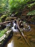 Courant et cascades minuscules Photo stock