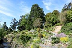 Courant et flanc de coteau dans le jardin botanique NZ de Dunedin photo stock