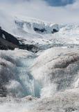 Courant glaciaire de fonte avec le champ de glace de Colombie à l'arrière-plan Photographie stock libre de droits