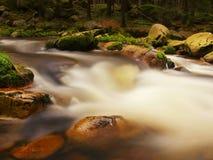 Courant mousseux rapide dans le mouvement au-dessus de grands rochers moussus La rivière de montagne avec de l'eau froide foncée, Photos stock