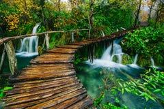 Courant profond de forêt avec de l'eau clair comme de l'eau de roche avec la voie Lacs Plitvice Photos libres de droits