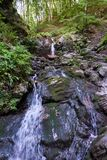 Courant puissant en cascade de forêt d'été dans la forêt images stock