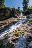 Courant rapide de montagne, paysage un jour ensoleillé image libre de droits