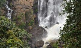 Courants distinctifs de cascade Images stock