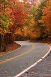 Courbe de l'automne S Images stock