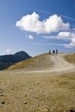 Courbe de route de montagne Images libres de droits