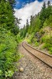 Courber le chemin de fer par une forêt photographie stock libre de droits