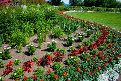 Courber le jardin lumineux et coloré. Photo stock