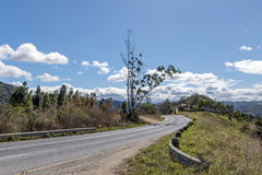 Courber le Landscap sec d'hiver d'Asphalt Country Road Running Through photo stock