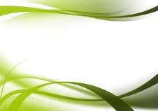 Courbes abstraites de vert de fond Photographie stock libre de droits
