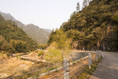 Courbes et ruisseau de route Photo libre de droits