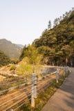 Courbes et ruisseau de route Images stock