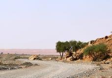 Courbure dans la route dans le désert. Images stock