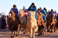 Coureurs de chameau de Naadam Image libre de droits