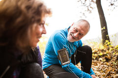 Coureurs supérieurs en nature, attachant des dentelles Homme avec le smartphone Photographie stock libre de droits