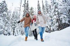 Courez dans l'hiver Image stock
