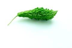 Courge amère avec des feuilles sur le fond blanc Photographie stock libre de droits