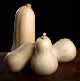 Courge de Butternut Images stock