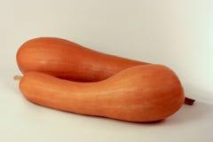 Courge de butternut de deux oranges Photographie stock