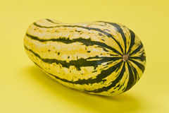 Courge de Delicata Images stock