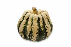 COURGE de GLAND isollated sur le blanc Images stock