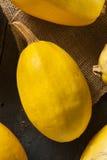 Courge de spaghetti jaune organique crue Image libre de droits