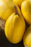 Courge de spaghetti jaune organique crue Photographie stock libre de droits