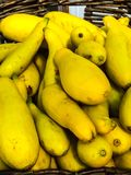 Courge jaune Images stock