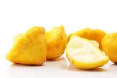 Courge jaune Pattypan Photos libres de droits
